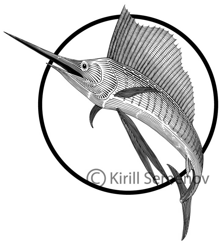 Sailfish by Skirill