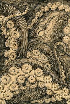 Octopus by Skirill