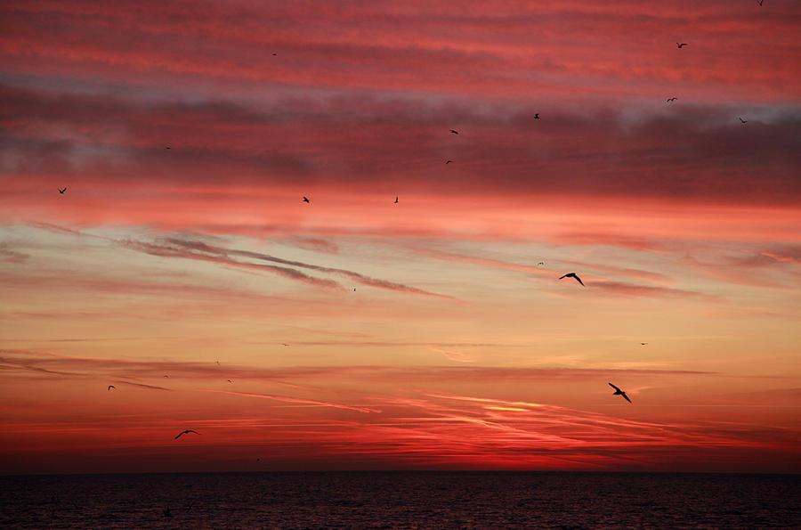 Sunrise 3 by DOBBIE3864