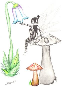 Old Fairy Sketch