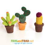 Cactus Crochet Amigurumi Kit FROGandTOAD Creations