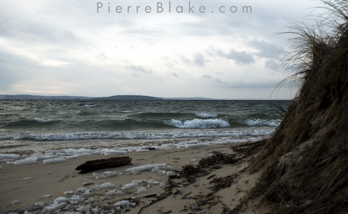Beach Log. by pierreblake
