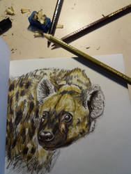 Hyena Time - Sketchbook upload by Deep6Howl