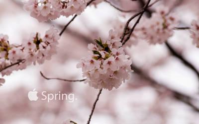 Spring Cropped 169 by iiyamaline