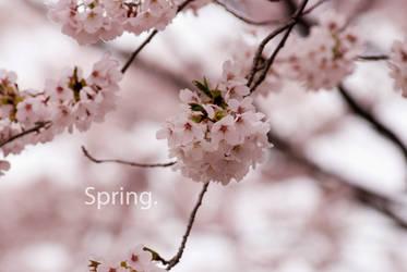 Spring Nl by iiyamaline