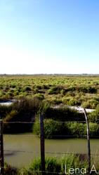 Endless Marshlands by LenaRainbow