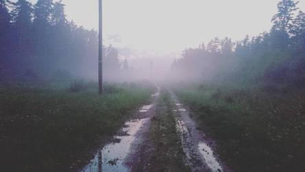 Summer Soltice Fog