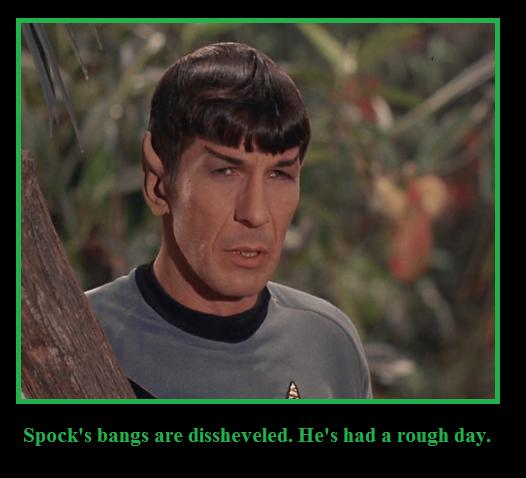 Spock's Bangs by youliedanyway