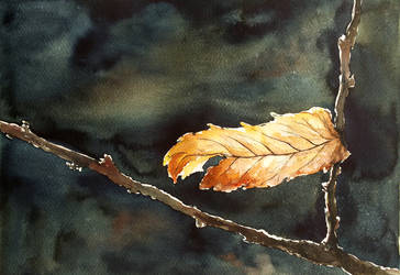 2017 09 30 Autumn Leaf by keryneja
