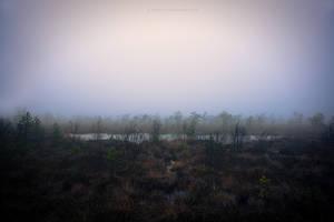 The Black Moor by S-Patriot