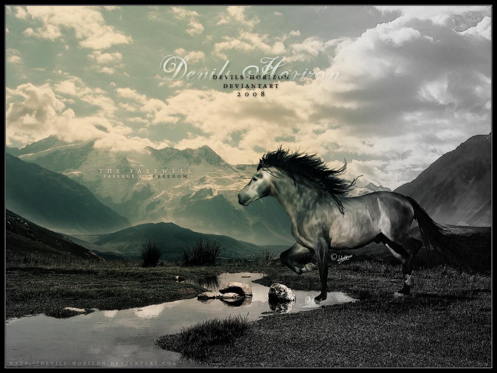 ^ Twilightstars ^ horses 5252fad32fca96de46059891cebc038c