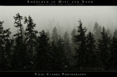 Shrouded in Mist and Snow by devils-horizon