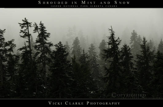 Shrouded in Mist and Snow