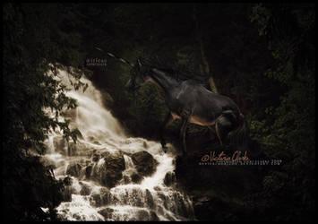 aeirleas -- asphyxiate.. by devils-horizon