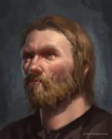 Portrait, Beard and Hair by Emiljart