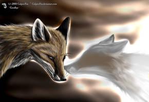 Goodbye by Culpeo-Fox