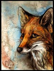 Innocent by Culpeo-Fox