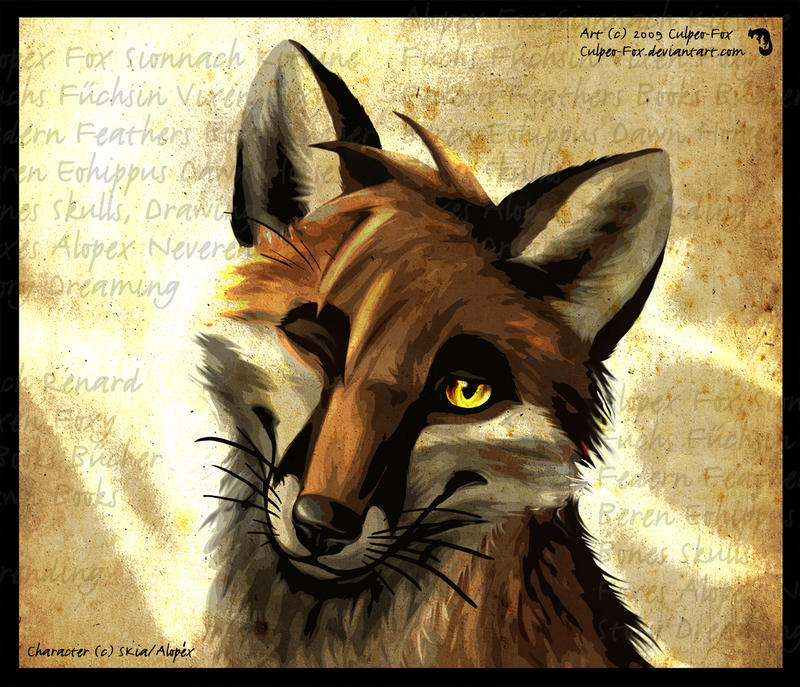 http://fc00.deviantart.net/fs43/i/2009/189/b/b/Another_innocent_Vixen_by_Culpeo_Fox.jpg