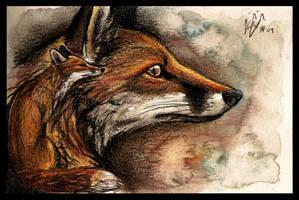 Anima by Culpeo-Fox