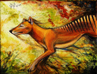 Thylacine - Road to Extinction by Culpeo-Fox
