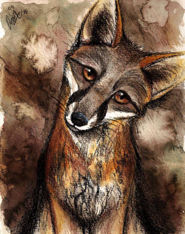 professional project 3 fox character design fallen3242047