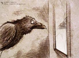 Mirror by Culpeo-Fox