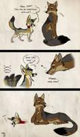 Kit Fox Tragedy