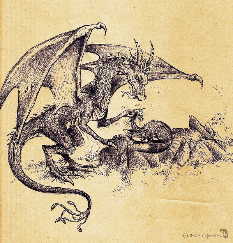 http://fc03.deviantart.net/fs49/i/2009/218/d/5/the_Dragon_who_annoyed_the_Fox_by_Culpeo_Fox.jpg