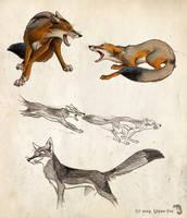 Get down, vixen by Culpeo-Fox