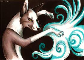 Illusions by Culpeo-Fox