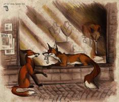Urban Foxes by Culpeo-Fox