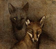 Shadows by Culpeo-Fox
