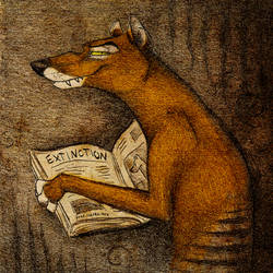 Extinction by Culpeo-Fox