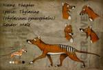 Thylacine Sheet Phosphor