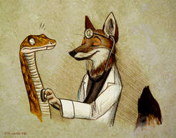 Dr. Chilla by Culpeo-Fox