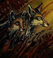 Shadows and Dust by Culpeo-Fox