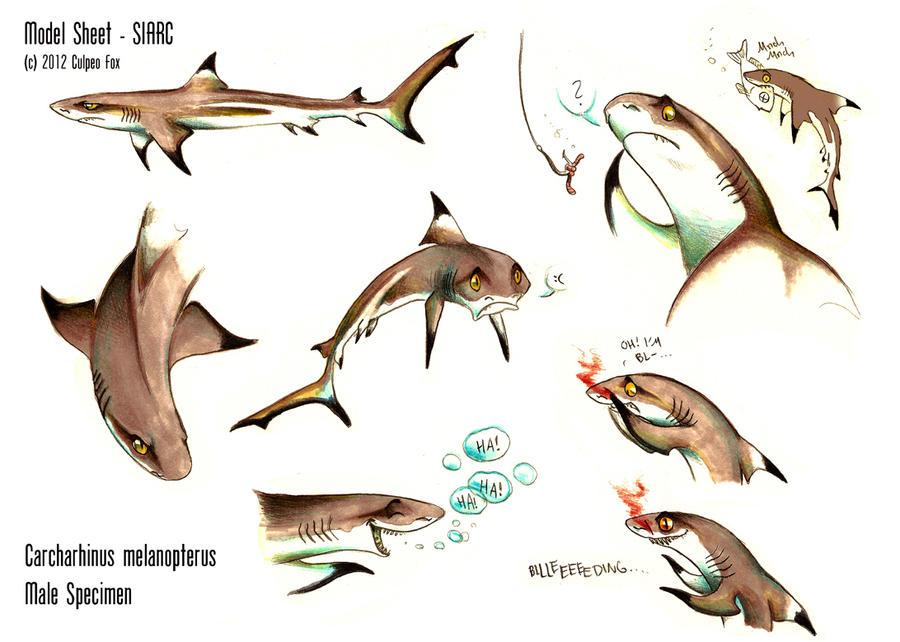 Blacktip Reef Shark - Sheet Siarc by Culpeo-Fox