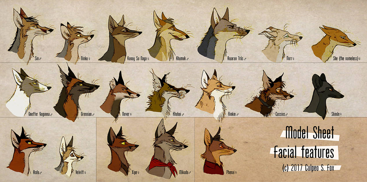 Foxes and facial features by culpeo fox
