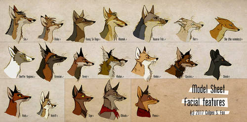 Foxes And Facial Features by Culpeo-Fox