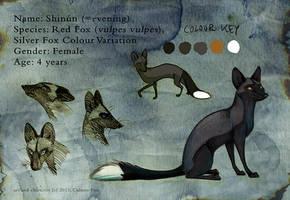 Sheet Shinun by Culpeo-Fox