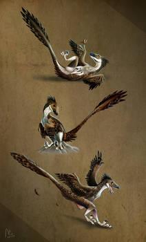 Three Raptors