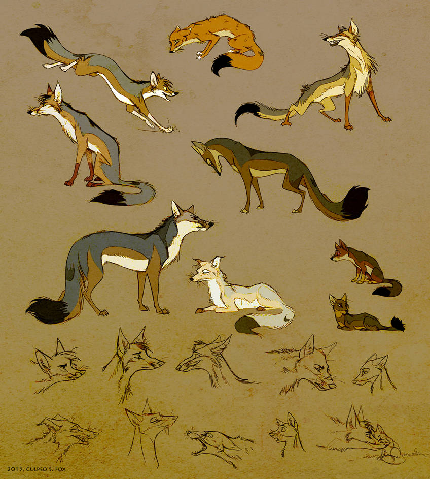 Foxes Art Culpeo Fox