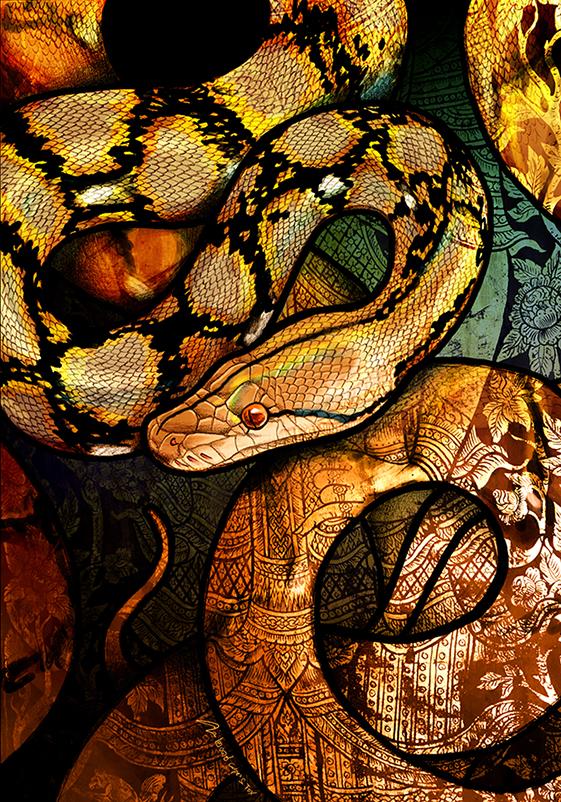 Reticulated Python by Culpeo-Fox