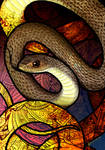 Indo-Chinese Rat Snake