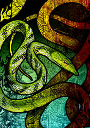 Oriental Whip Snake by Culpeo-Fox