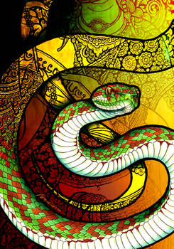 Beautiful Pit Viper