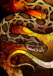 Siamese Viper by Culpeo-Fox