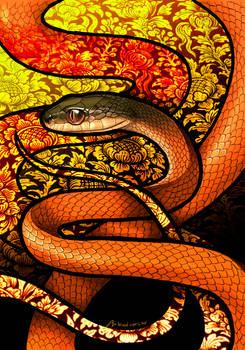Black-Headed Cat Snake