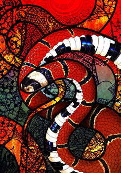 McClelland's Coral Snake