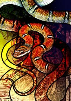 Twin Barred Tree Snake